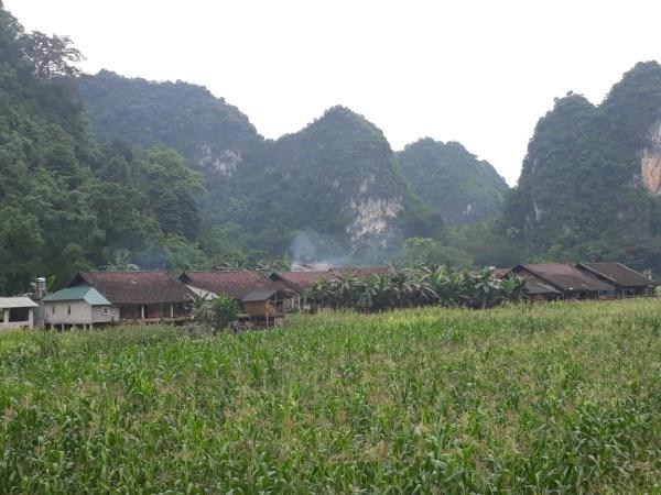 Bản làng người Tày - Nùng.